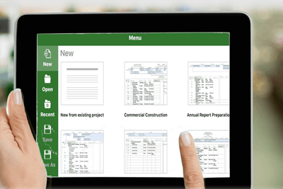 Leverage your Microsoft Project Investment
