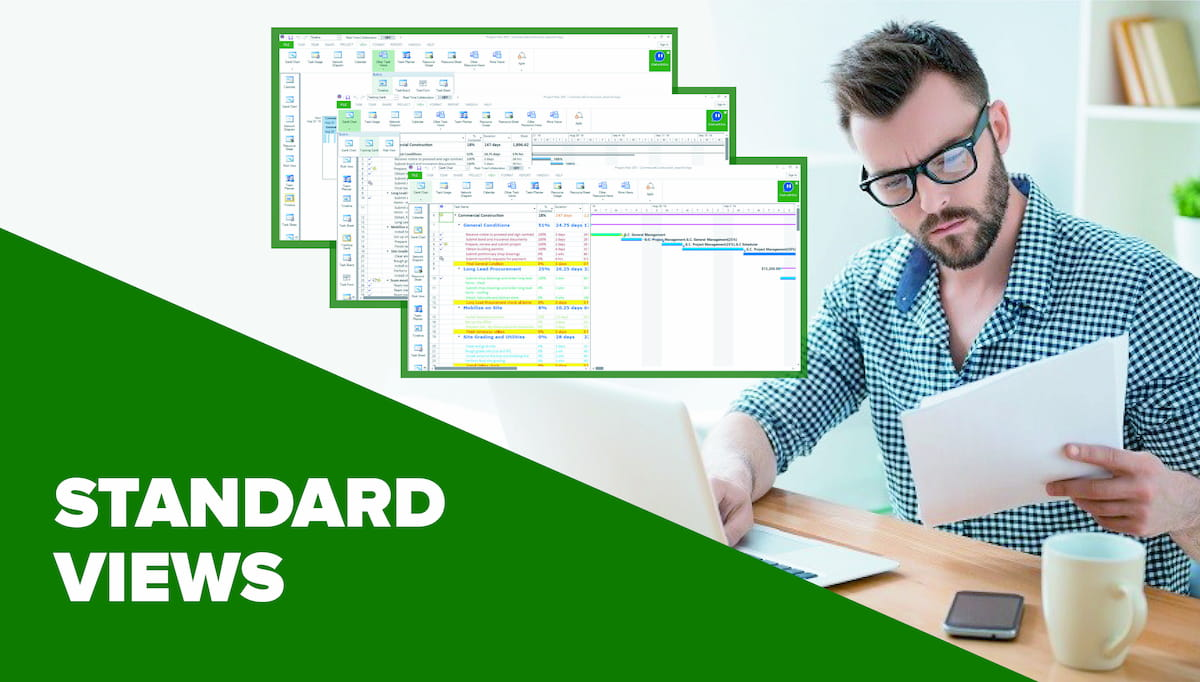Standard Views in Project Plan 365