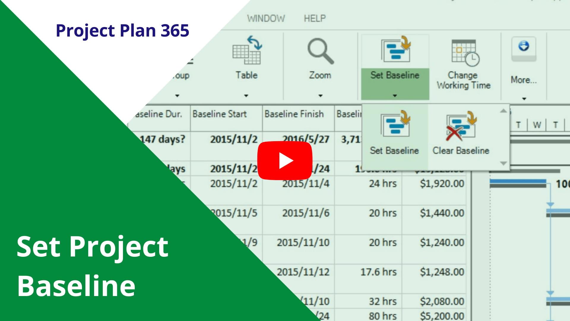 Set Project Baseline